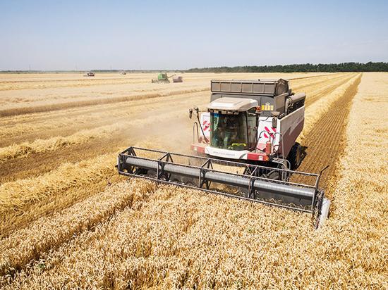 В Пермском крае убраны зерновые с площади более тысячи гектаров