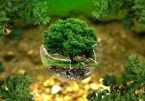 Серпуховичей приглашают внести свой вклад в озеленение города