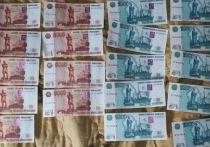 Фальшивомонетчик задержан в Боровском районе