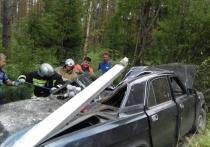 Столкновение со столбом привело к смерти: водитель
