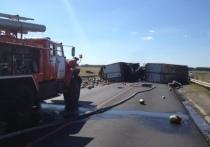 В Тамбовском районе произошло ДТП: перевернулся КамАЗ с арбузами