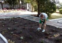 Калужские активисты провели благоустройство мемориальных комплексов