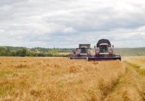 Агропромышленные хозяйства Ржевского района приступили к уборке урожая