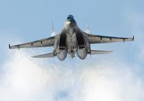 Россия поменяет Су-35 на пальмовое масло: кого раздражает такой бартер