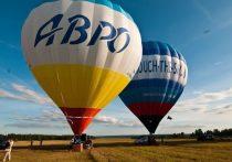 На тверском фестивале воздухоплавания покажут цирковые представления