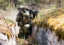 США повторяют судьбу немецкого Вермахта в Норвегии: дружба против России