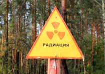 Украина спланировала радиоактивный теракт в Донбассе, чтобы подставить Россию