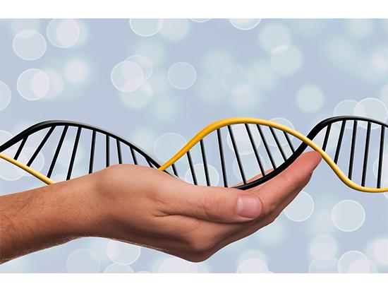 Что можно узнать благодаря тесту ДНК