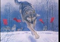 Областное правительство выплатило четыре миллиона охотникам за волчьими головами