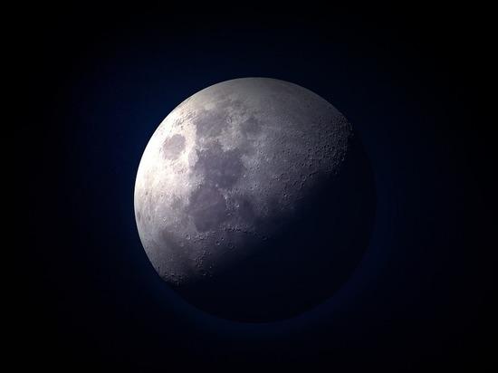 Луну заселят гусеницами из Китая