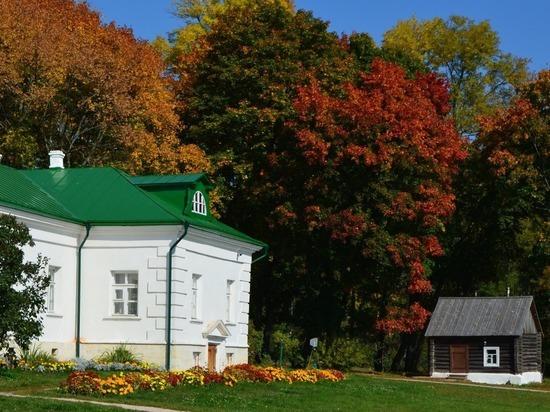 Дом Толстого в шоколаде возмутил Музей-усадьбу «Ясная Поляна»