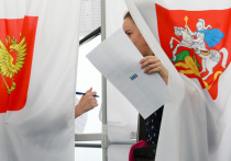 Наблюдатели осмотрели загородные участки для голосования