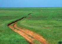 В Калмыкии чистая почва