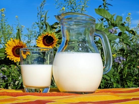 Молоко на завтрак объявлено лучшим способом похудеть