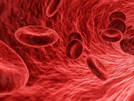 Биохимический анализ крови в челябинске: где сделать, что покажет.