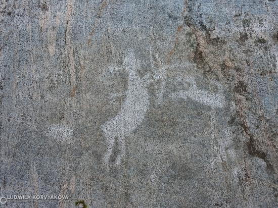 Почему петроглифы Карелии еще не вошли в список всемирного наследия ЮНЕСКО. ФОТО