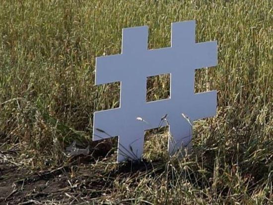 Сибиряк пристроил на обочину символы интернет-свободы