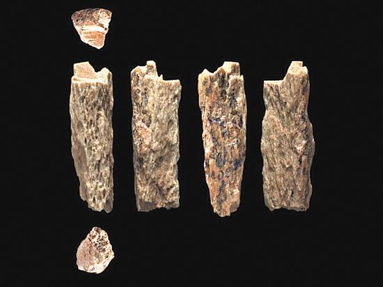 Чудо-находка в Денисовой пещере изменила теорию о формировании человека