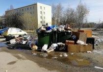 Руководители районных компаний по уборке ТКО хотели посовещаться с руководством республики, но их проигнорировали