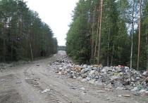 Ситуация с вывозом отходов в Пряжинском район взорвалась в буквальном смысле: началась пальба