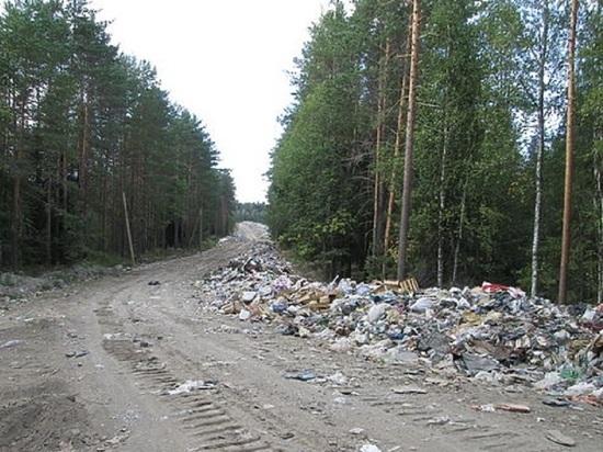 Что привело к такому исходу, и куда в этом случае будут свозить отходы района?
