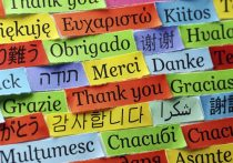Как в школах Алтайского края будут вводить второй иностранный язык