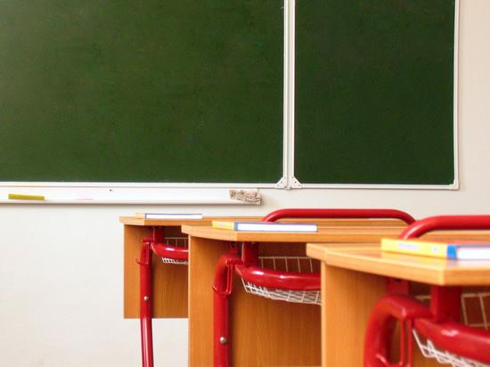 Родители погибшего в Подмосковье подростка обвинили в его смерти одноклассницу