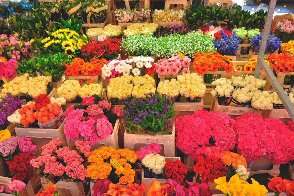 Цветы оптом на улице строителей москва
