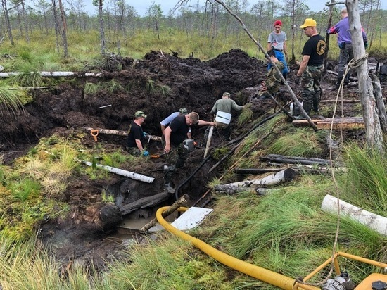 В болоте под Новгородом найден американский истребитель времен ВОВ
