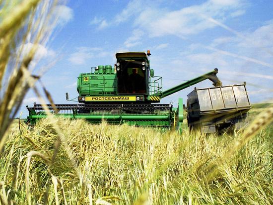 Аграрии потребовали ограничить экспорт зерна из России