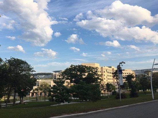Территорию научных исследований могут создать в Приморье