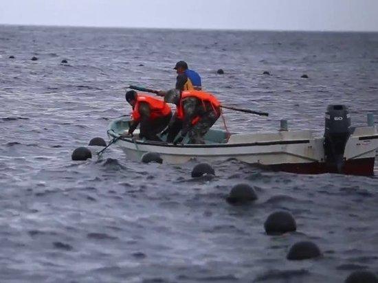 Рыбаки и лодки: с последствиями тайфуна разбираются в Приморье