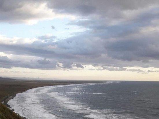 Разлагающийся труп мужчины не хотят убирать с пляжа в Приморье