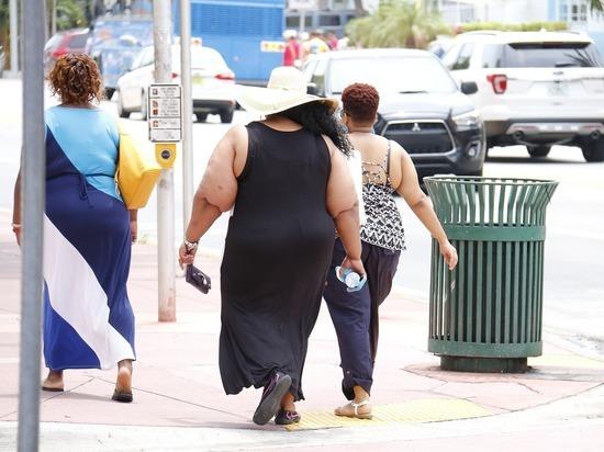 Главную причину ожирения определили благодаря искусственному интеллекту