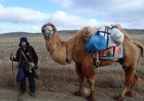 Борьба за туристов приобретает в Казахстане ожесточенные формы