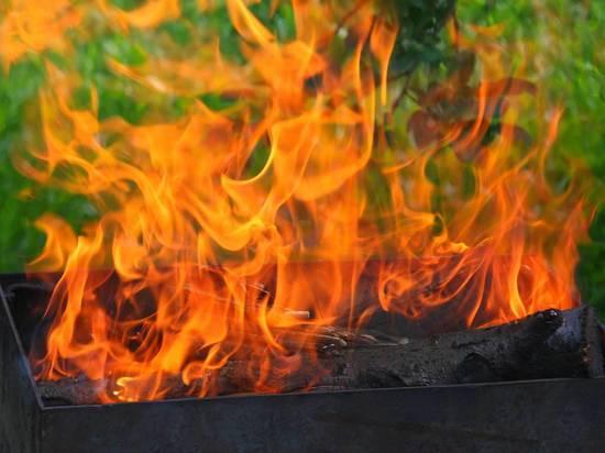 В Подмосковье ребенка убило взрывом бутылки с жидкостью для розжига