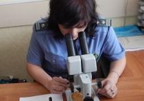 О досмотре подкарантинной продукции на территории Тверской области