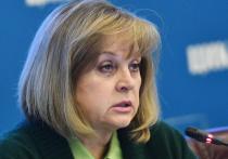 Глава ЦИК Памфилова взяла на контроль ситуацию на выборах в Калмыкии
