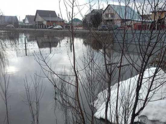 Жители Новоалтайска пытаются выяснить причину весеннего потопа на их приусадебном участке