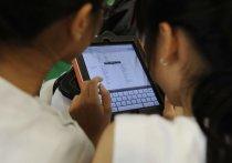 Владимирцы смогут принять участие в переписи населения через интернет