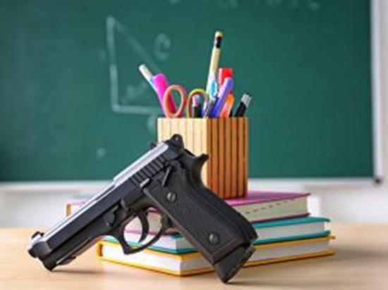 «Больше оружия вовсе не означает больше безопасности»