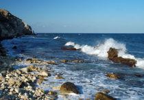 В районе мыса Тарханкут в Крыму учёные обнаружили корабль, построенный почти столетие назад