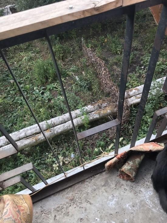 Годовалый ребенок упал с балкона второго этажа в многоэтажке Тамбова