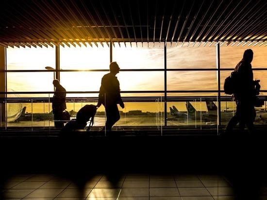 Назван самый выгодный месяц для покупки авиабилетов