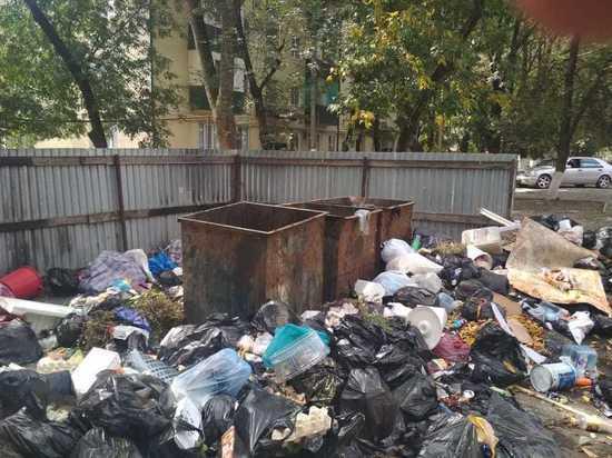 Власти заваленного мусором Малгобека ответят за бездействие