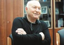 Инженер Аничковъ, политик-технократ Лужков и незадачливые верноподданные ВТО на Краснопресненской