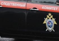 Повар-сушист покусал калужского инспектора ДПС при попытке задержания