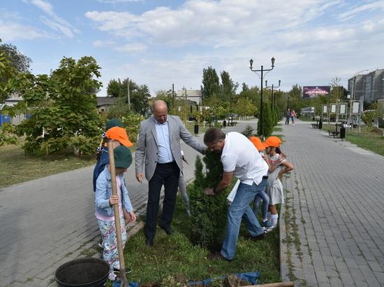 В Сквере Ветеранов прошел День чистоты