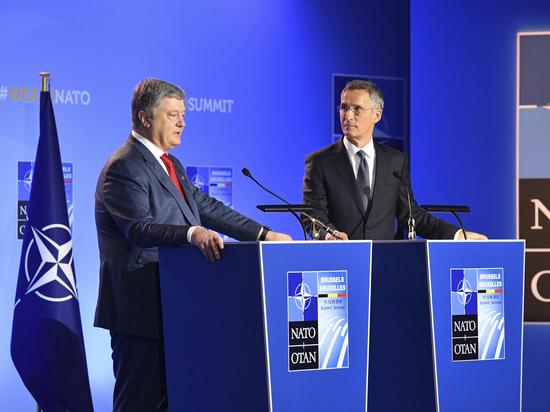 НАТО готово принять Украину в свои члены без подготовки