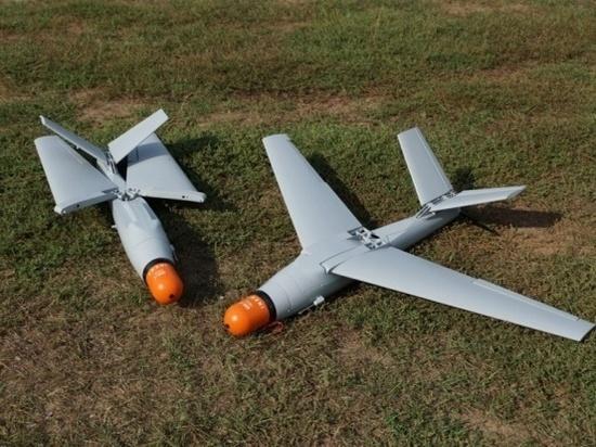 ВСУ нацелились на выпуск дронов-убийц